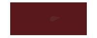 logo-century